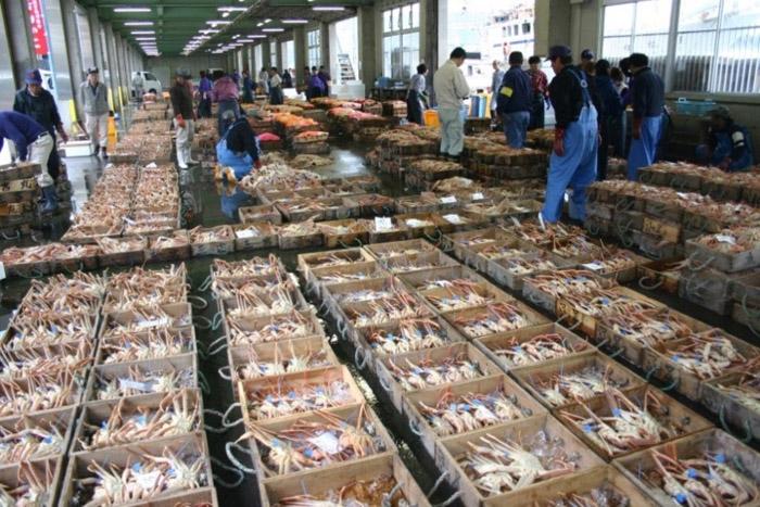 津居山港市場